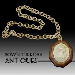 Celluloid and Wood Necklace Cameo - 1940's